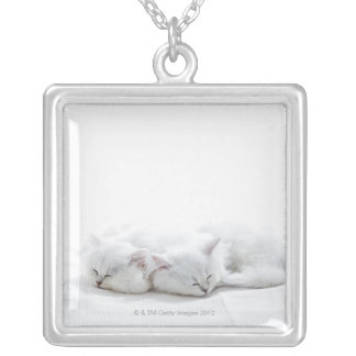 Two Persian Kittens Silver Plated Necklace