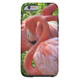 Two Pink Flamingoes Tough iPhone 6 Case