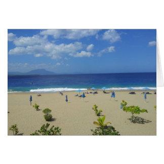 TWO PLAYA ALCIA BEACH SOSUA DOMINICAN REPUBLIC SUR CARD