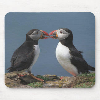 Two puffins mouse mat