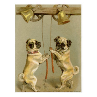 Two pug dogs ringing the Christmas bells Postcard