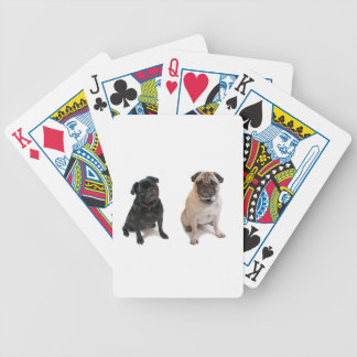 Two pugs one beige one black bicycle playing cards