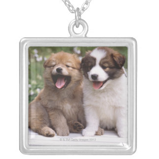 Two puppies sitting together silver plated necklace