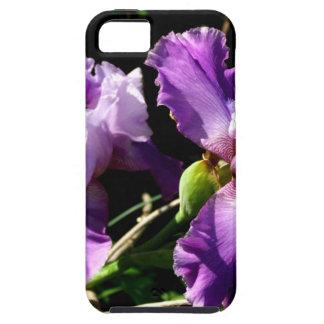 Two Purple Iris Flowers iPhone 5 Case