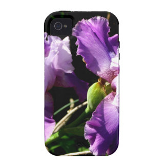 Two Purple Iris Flowers Vibe iPhone 4 Covers