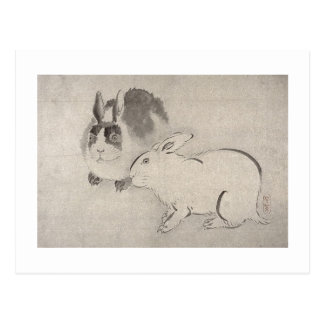 Two Rabbits in Black and White Postcards
