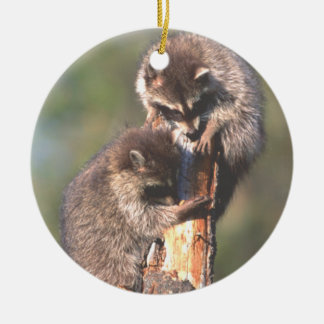 Two Racoons on Stump Ornament