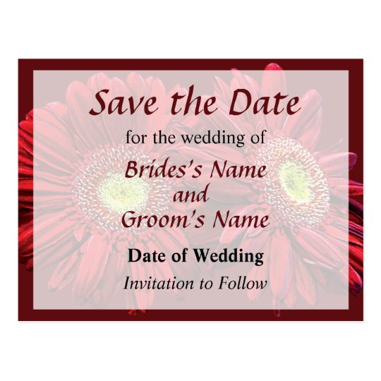 Two Red Daisies Save the Date Postcard