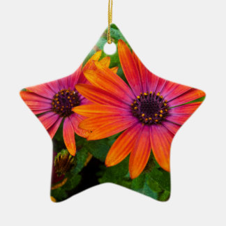 Two red flowers with added texture ceramic star decoration
