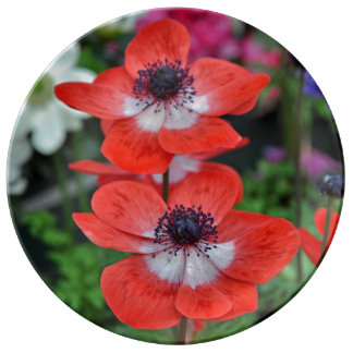 Two red poppies floral print porcelain plate