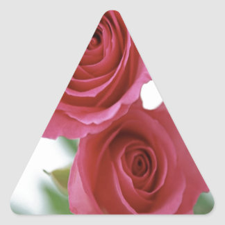 two red roses triangle sticker