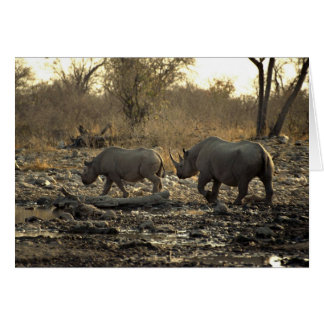 Two rhinos greeting card