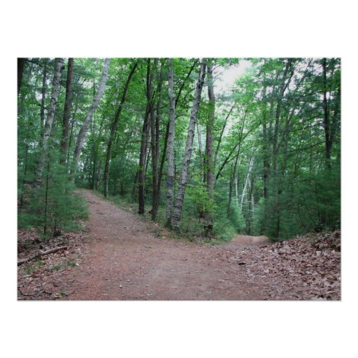 Two Roads Diverged In A Yellow Wood Poster