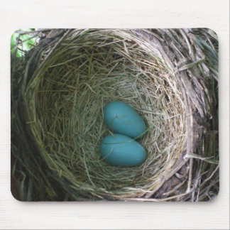 Two Robin's Eggs in Nest Mouse Mat