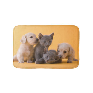 Two Russian Blue Kittens And Two Dachshund Puppies Bath Mat