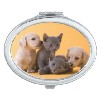 Two Russian Blue Kittens And Two Dachshund Puppies Vanity Mirrors