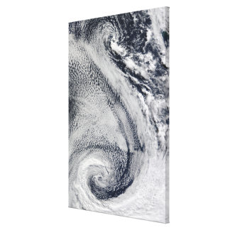 Two S-Shaped Polar Hurricanes Canvas Print