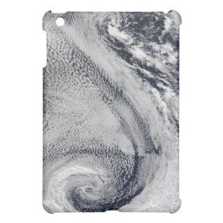 Two S-Shaped Polar Hurricanes Case For The iPad Mini