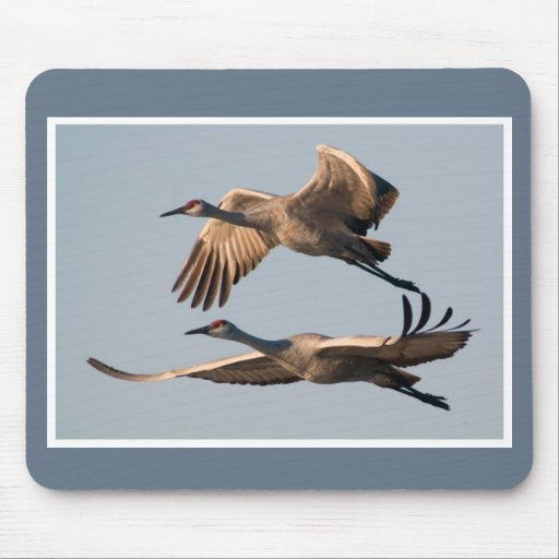 Two Sandhill Cranes Flying Over Bosque Mouse Pads
