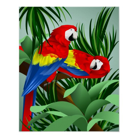 Two Scarlet Macaws Poster