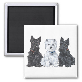 Two Scotties and a Westie Square Magnet