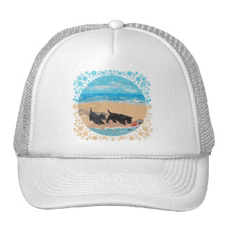 Two Scotties at the Beach Hats