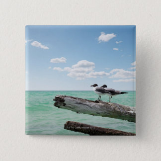 Two seagulls sitting on a dead tree sticking out 15 cm square badge
