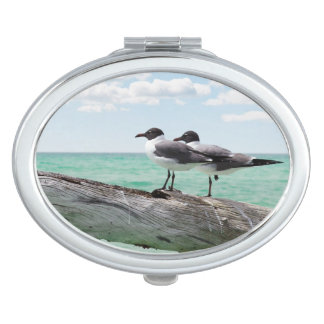 Two seagulls sitting on a dead tree sticking out travel mirror