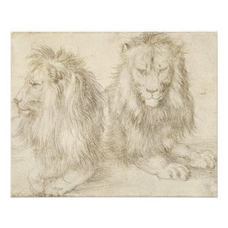 Two Seated Lions by Albrecht Durer 11.5 Cm X 14 Cm Flyer