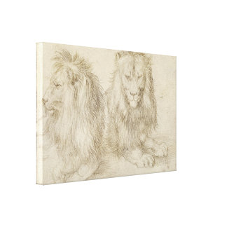 Two Seated Lions by Albrecht Durer Gallery Wrap Canvas