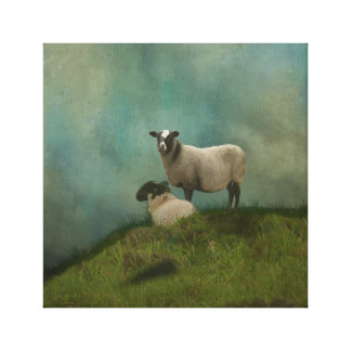 two sheep in field canvas print