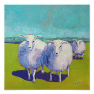 Two Sheep In Field Poster