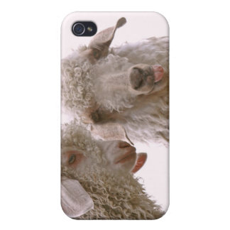 Two Silly Goats iPhone 4 Case