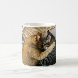 Two Sleeping Tabby Cats Cuddling Coffee Mug
