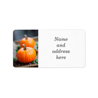 Two small pumpkins address label
