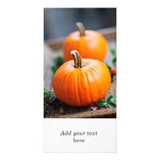 Two small pumpkins photo cards