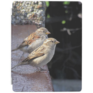 two sparrows iPad cover