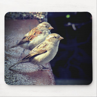 two sparrows mouse mat