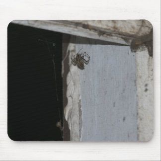 Two Spiders Mouse Pad