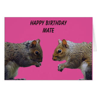 Two Squirrels Happy Birthday Mate Card