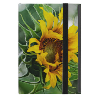 Two Sunflowers Two Sides Cover For iPad Mini