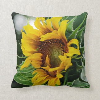 Two Sunflowers Two Sides Cushion