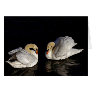 Two Swans Black & White Greeting Card