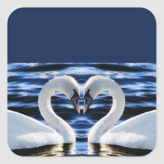 Two swans square sticker