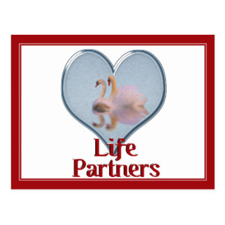 Two Swans Swimming w text Life Partners Postcards