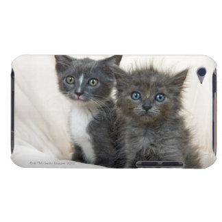 Two tabby kittens iPod touch cover