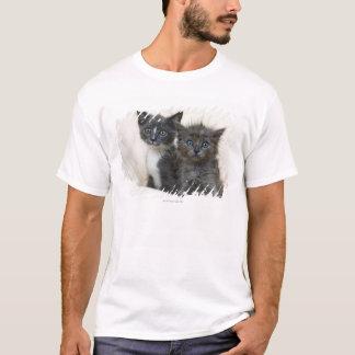 Two tabby kittens T-Shirt