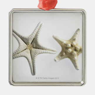 Two Thorny Starfish Christmas Ornament