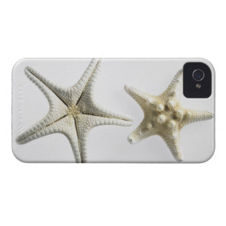 Two Thorny Starfish iPhone 4 Cover