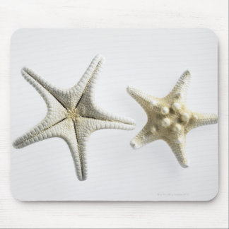 Two Thorny Starfish Mouse Mat